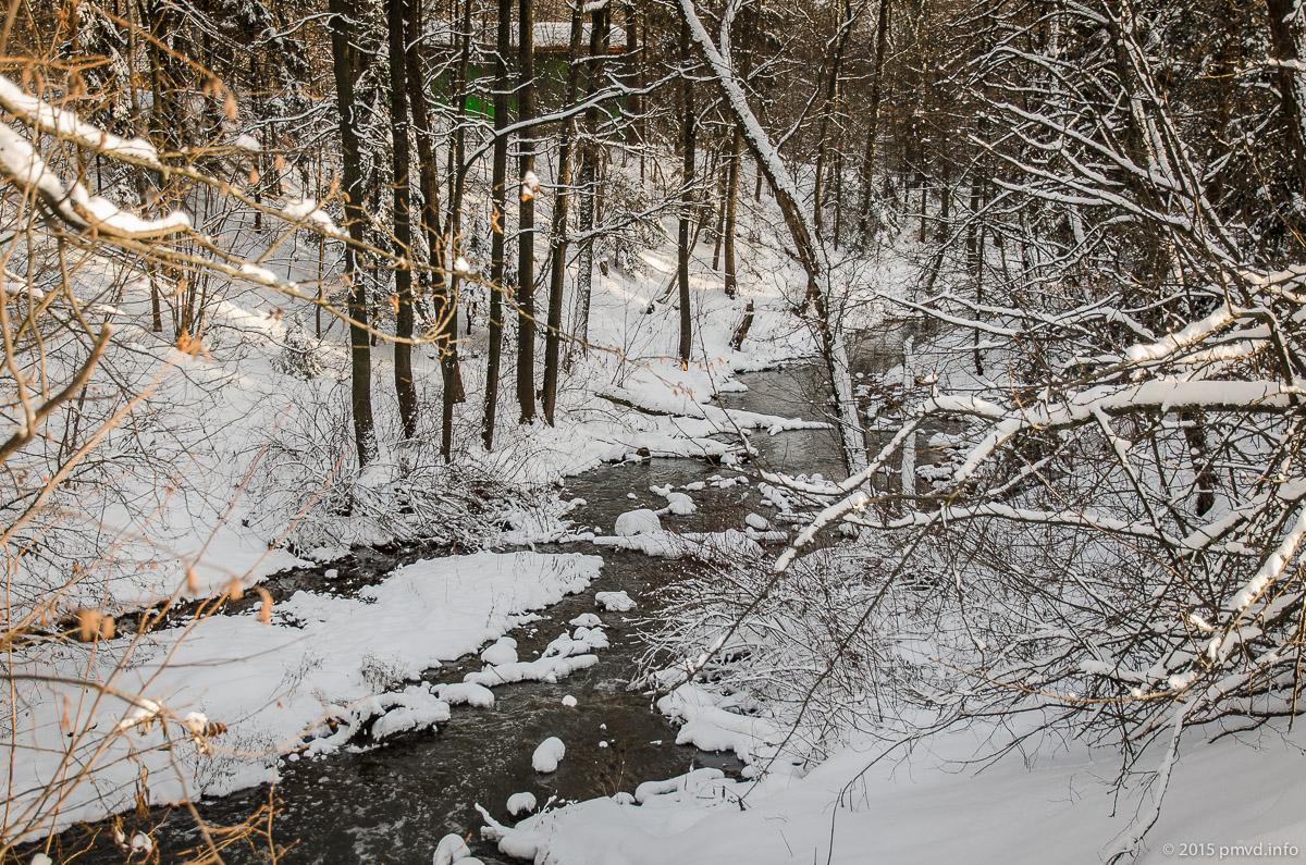 Река Битца в Битцевском лесу