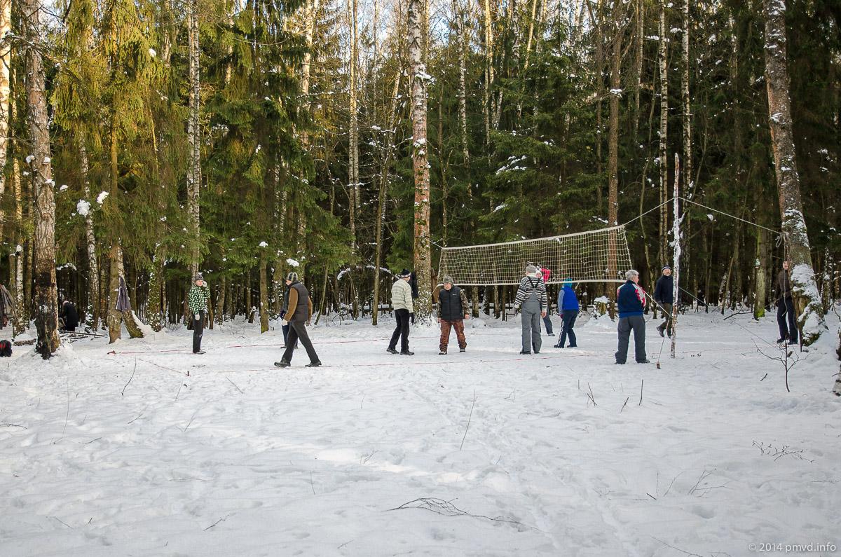 Волейбольная площадка в лесу в Трехгорке