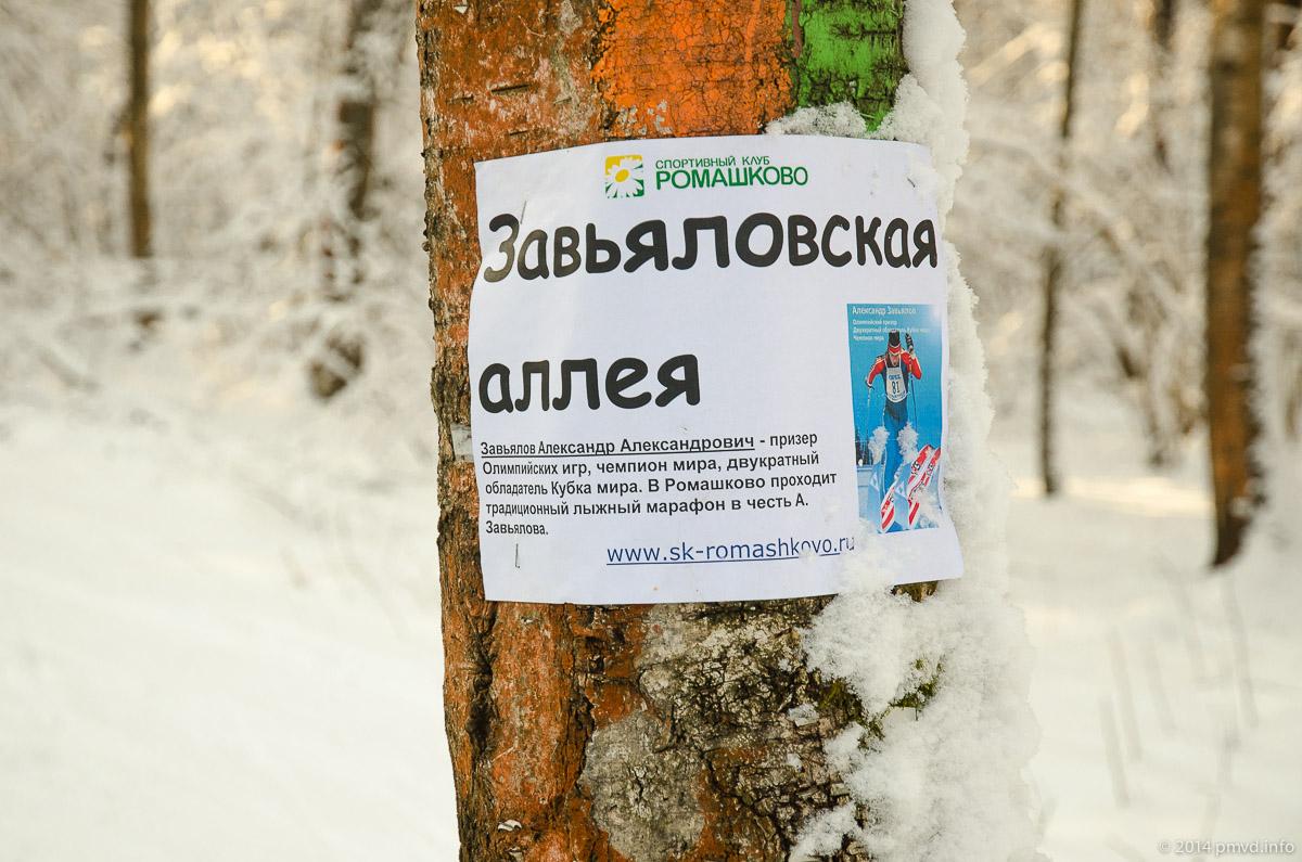 Трасса в Ромашково. Завьяловская аллея