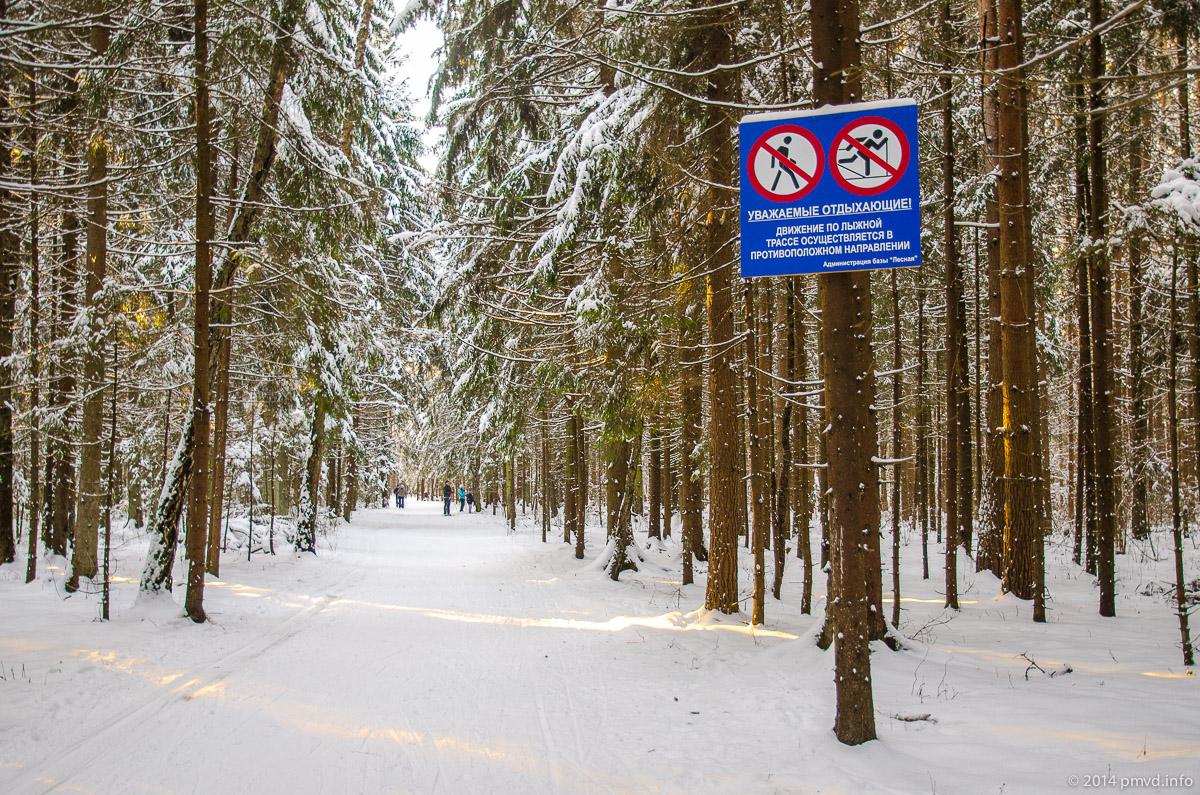 Освещенная лыжня в Троицке.