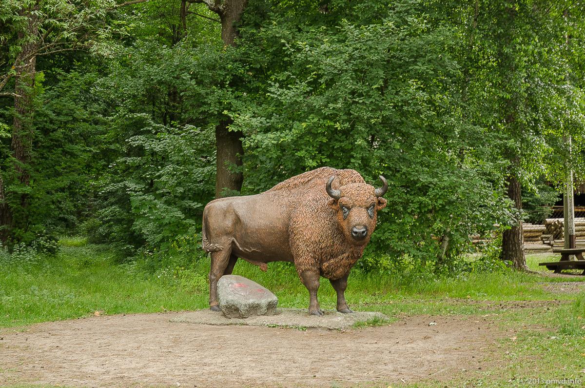 Памятник зубру в Приокско-Террасном заповеднике