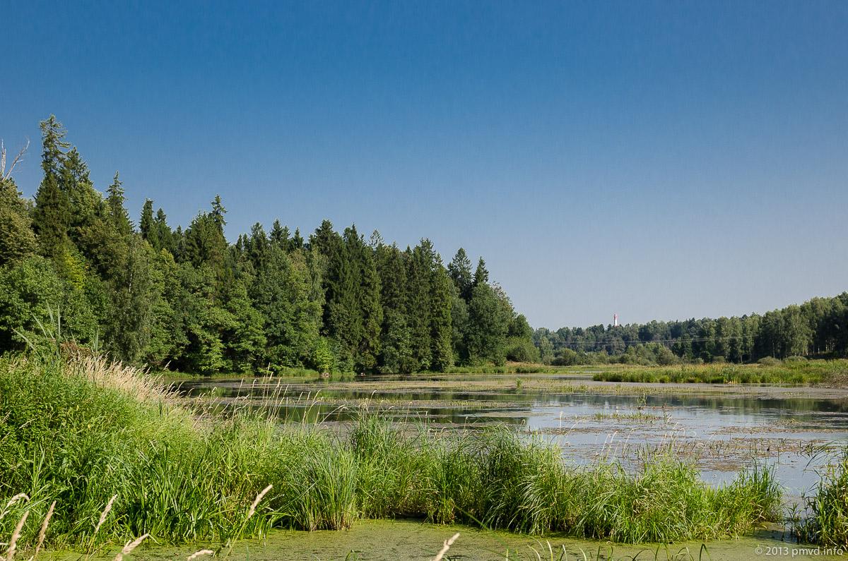 Абрамцево. Нижний пруд на реке Воря