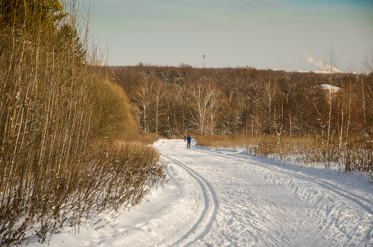 Лыжный маршут в 5 километров в Битцевском лесу