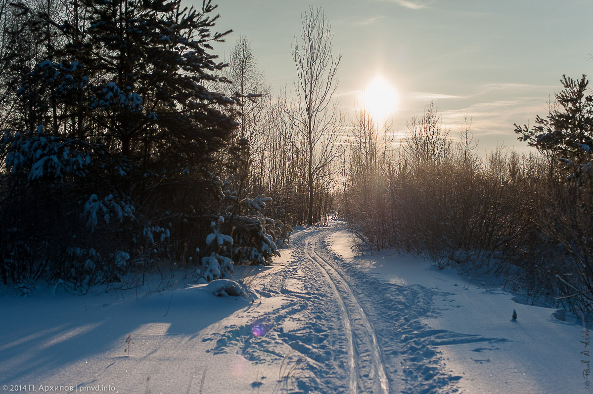 Лыжня в Раменском