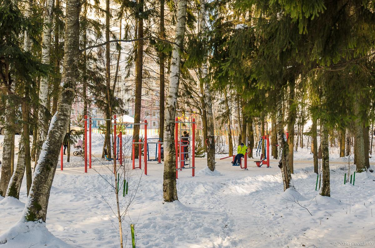 Тренажеры в лесу в Трехгорке