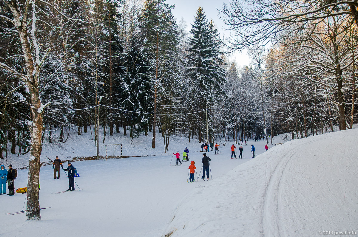 Лыжня в Троицке