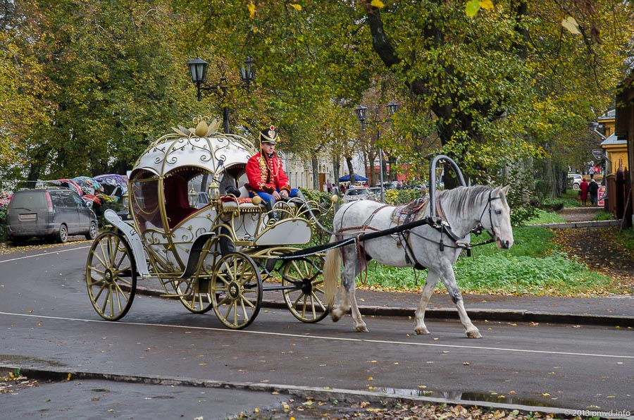 Кареты и лошади в Суздале