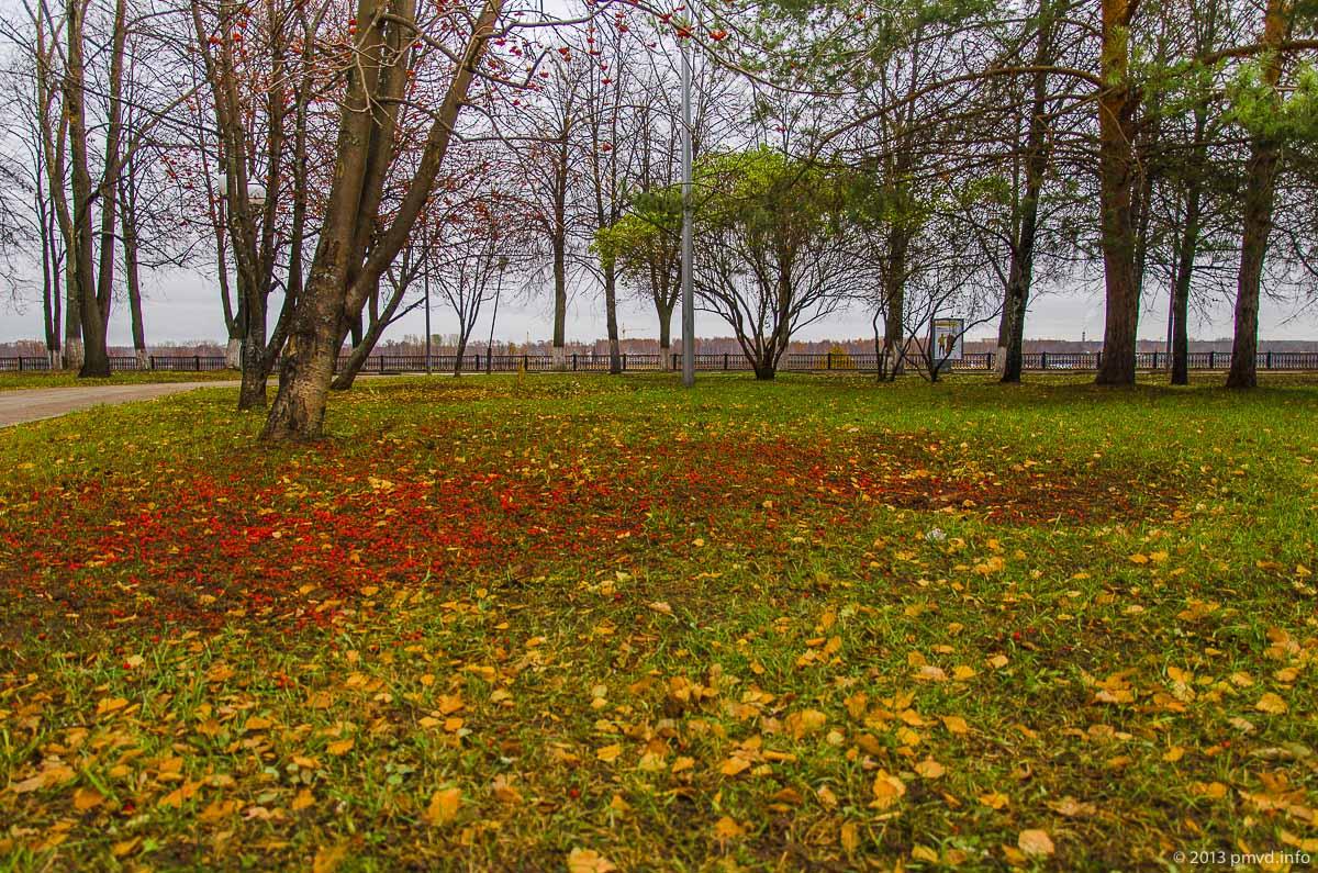 Ярославль. Поздняя осень.