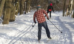Лыжня в Битцевском лесу